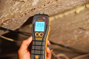 Protimeter used on walls and timber to detect instrumental damp readings