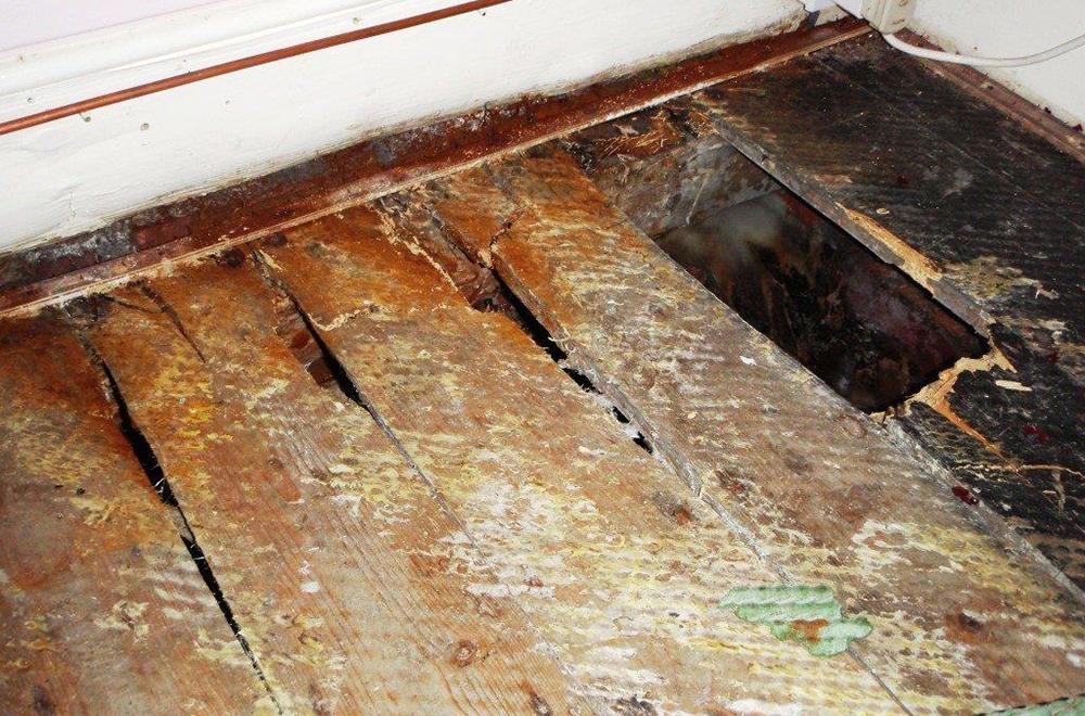About House Surveys In Preston Home Defect Surveys